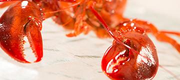 HHP_IDRO_seafood